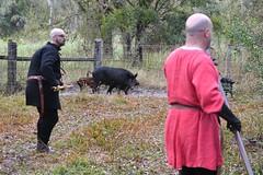 EEF_7683 (efusco) Tags: boar medieval spear brambleschoolearteofthehunt bramble schoole military arts academy florida ferel hog pig