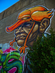 Playing Chicken (Steve Taylor (Photography)) Tags: hat maori bird chicken graffiti mural streetart tag brown green red orange man newzealand nz southisland canterbury christchurch bush outline perspective