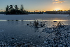 Clunie Sunrise (jonathan.scaife81) Tags: loch clunie blairgowrie dunkeld butterstone winter morning frozen ice snow sunrise canon 6d tamron 28300 tamron28300 trees island white
