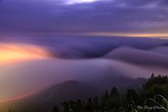 隙頂傳說_DSC7914N (何鳳娟) Tags: 隙頂 流瀑 雲瀑 二延坪登山步道 山岳 夜景 風景 台18縣道 阿里山公路 大阿里山