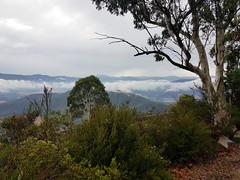 2019-01-27T09.19.30.0319_samsung (ajft) Tags: alpineclassic audax aus australia geo:lat=3670916667 geo:lon=14682722222 geo:zip=3740 geotagged mountbuffalo porepunkah victoria
