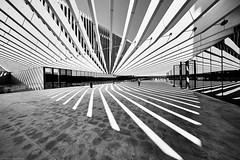 Lissabon Avenida 24 de Julho 4 bw (rainerneumann831) Tags: avenida24dejulho lisboa lissabon bw blackandwhite architektur linien gebäude ©rainerneumann
