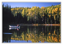 Casting a Line in Glorious Colorado Autumn - 1991 (sjb4photos) Tags: epsonv500