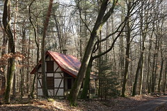 The Cabin (wellandok) Tags: wood wald mets cabin waldhaus onn