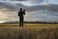 Lontano (nicolamarongiu) Tags: landscapes paesaggio cielo nuvole scala pupazzo orsacchiotto sunrise surrealism surreale alto inalto colori sardegna sardinia dream insieme guardare lontano concept abstract concettuale erba prato colline campi pianura