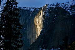 This is a different view of 'Firefall' that isn't as commonly shown; About 30 minutes prior to the water turning a fiery orange color, Horsetail Fall gave off a heavenly glow that was just as magical... (Rachel Finney Photography) Tags: yosemite national park firefall heavenly glow horsetail fall california eastern sierras yellow magical rocks trees snow winter season 2019 february wood el capitan flowing water sky sunset granite