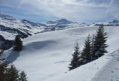 DSCF3730 (Laurent Lebois ©) Tags: laurentlebois france nature montagne mountain montana alpes alps alpen paysage landscape пейзаж paisaje savoie beaufortain pierramenta arèchesbeaufort