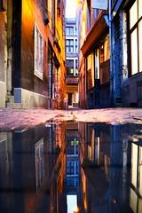 Rue du Carré (Liège 2019) (LiveFromLiege) Tags: liège luik wallonie belgique architecture liege lüttich liegi lieja belgium europe city visitezliège visitliege urban belgien belgie belgio リエージュ льеж reflet reflection puddle puddlegram