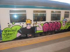 gelos bravi t- daddy? (en-ri) Tags: ordea gelo crew gelos throwup train torino graffiti writing johnny bravo mamma verde fuxia nero