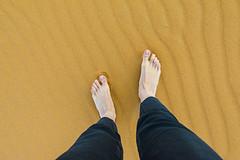 240_F_207023859_N0O4XCY7J6N1seG7RchxG4tei29fynoC (lhoussain) Tags: camel another life sunrise sunset calm relax berber women
