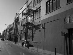 autumn 2017 / 1 (peaceblaster9) Tags: sanfrancisco street autumn sunlight walk ricoh gr blackandwhite bnw bw blackwhite サンフランシスコ ストリート スナップ 白黒 モノクロ