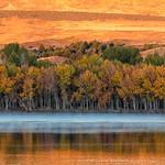 Fall Colors thumbnail