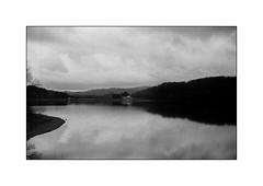 Le Morvan (Punkrocker*) Tags: nikon s2 rf rangefinder nikkor 50mm 5014 sc film kodak trix pushed 800 nb bwfp lake lac landscape paysage morvan bourgogne france