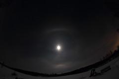 Moon halo_2019_01_18_0011 (FarmerJohnn) Tags: kuu kuutamo moonlight reflection heijastus haloilmiö halo moonhalo night yö talvi winter january tammikuu hanki snowfield lumi miljoonatimanttiahangella snow samyang8mm35umcfisheyecsii canoneos7d canon 7d suomi finland valkola anttospohja juhanianttonen