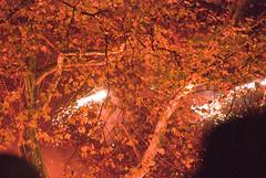 "Fireworks_061105_014 (hoffman) Tags: british england english entertainment firework horizontal leisure night outdoors performance show uk unitedkingdom towerhamlets threemills 1997 londonartsboard rightsofpassage art fireworks davidhoffman davidhoffmanphotolibrary socialissues reportage stockphotos""stock photostock photography"" stockphotographs""documentarywwwhoffmanphotoscom copyright"