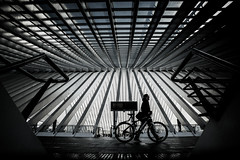 Man with Biclycle-DSC_4291-2 (thomschphotography3) Tags: liège lüttich belgium streetphotography trainstation architecture lines man bicycle symetriy