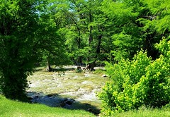 Guadalupe River (austexican718) Tags: centraltexas hillcountry landscape river trees water foliage weather