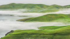 Green Hills (Jaykhuang) Tags: lowfog rollinghills springgreen eastbay bayarea california livermore pleasanton dublin trivalley sunrise layers jayhuangphotography