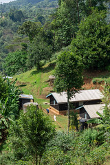 View of a Kieni farmer house (Coffee Collective) Tags: kenya kieni coffee directtrade nyeri thecoffeecollective