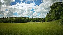 Vom Winde verweht (Maquarius) Tags: wiese wald wolken frühling sommer steigerwald unterfranken franken mainfranken natur landschaft