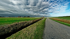 Vanishing To A Certain Point (Alfred Grupstra) Tags: ruralscene nature agriculture field farm sky summer landscape outdoors blue cloudsky meadow nonurbanscene grass land scenics road landscaped nopeople season 949
