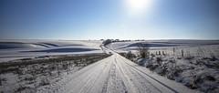 tracks on the tracks (Redheadwondering) Tags: tokina2035mmlens tokina sonyα7ii salisburyplain wiltshire winter snow snowday landscape tracks fence waterdeanbottom striplynchets