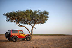 Jeep Life (Muath Alabbasi) Tags: saudi jeep wrangler desert arabia tree nature jeeplife