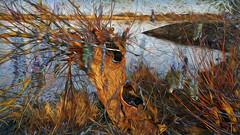 Bildschichten Am Fluss 31 Wieltsee (wos---art) Tags: bildschichten fluss river wasser water unterwasser underwater gestrüpp bäume baum verbrand ausgehöhlt rus äste ufer