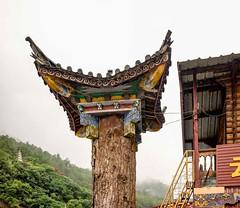 Tibetan Buddhist (Rod Waddington) Tags: culture cultural china chinese yunnan buddhist tibetan temple building tree traditional outdoor