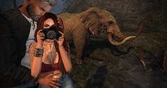 Jungle Excursions (Saga Mea) Tags: jungle elephants sl secondlife missingwhale digitalart virtualworld landscape couple