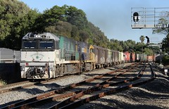 5PM5 Millswood 24/02/2019 (Dom Quartuccio) Tags: 5pm5 nr85 nr42 pn pnt pacific national pacnat train trains rail railway railroad transport travel sa south australia adelaide millswood sunday quiet nr southern spirit