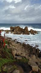 IMG_3189 (mudsharkalex) Tags: california pacificgrove pacificgroveca