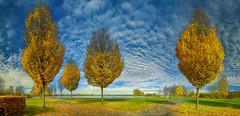 Panorama Hard Park Seepromenade (einfache Fotomomente) Tags: pentax kr smc pentaxda 1855mm f3556 al ii ƒ90 180 mm 1160 200