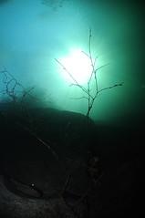NorthWales-VivianQuarry-201802-20 (Tony J Gilbert) Tags: snowdonia llanberis northwales viviandivecentre vivianquarry mountsnowdon diving aquatic freshwater quarry floodedquarry nikon d300