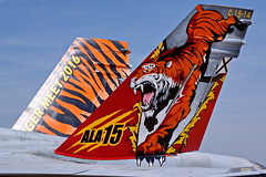 15-01  C.15-14 EF-18M  EF-18A-20-MC+  Zaragoza NTM 2016 (Antonio Doblado) Tags: 1501 c1514 ef18m ef18a ef18 f18 c15 aviación aviation aircraft airplane fighter zaragoza nato ntm tigermeet boeing mcdonnelldouglas