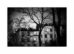 Montmartre (Punkrocker*) Tags: contax aria cy yashica 50mm 5014 ml film kodak trix pushed 1600 nb bwfp monochrome street city people night paris montmartre france