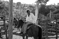 Cuba (michael.mu) Tags: 50mm cienfuegos cuba leica peterturnley trinidad cowboy horse m240 leicaaposummicronm50mmf2 blackandwhite bw silverefexpro outdoor rural