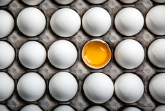 eggs and oaths are easily broken (auntneecey) Tags: eggs fullframe 365the2019edition 3652019 day75365 16mar19