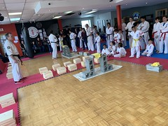 Samedi le 16 mars 2019 - Cours TAMESHIWARI