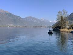 (Paolo Cozzarizza) Tags: italia lombardia brescia pisogne panorama acqua riflesso alberi piante imbarcazione