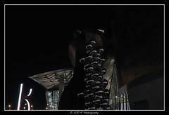 2019.03.15 Bilbao by night 29 (garyroustan) Tags: bilbao spain espana