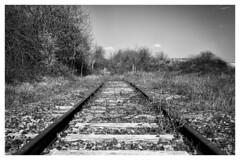 Back to no future X (CrËOS Photographie) Tags: gézaincourt somme france rails voieferrée railway lignes lines minimalisme minimalism abandonné abandoned