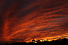 Sunset 3 5 19 #31 (Az Skies Photography) Tags: sun set sunset dusk twilight nightfall sky skyline skyscape rio rico arizona az riorico rioricoaz arizonasky arizonaskyline arizonaskyscape arizonasunset cloud clouds red orange yellow gold golden salmon black march 5 2019 march52019 3519 352019 canon eos 80d canoneos80d eos80d canon80d