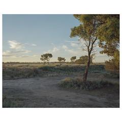 QFV-31 (sm0r0ms) Tags: mamiya7 6x7 kodak 120 film analog landscape mediumformat colorphotography newtopographics contemporarylandscape