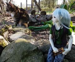 (claudine6677) Tags: bjd msd ball jointed doll asian dolls fairyland mnf minifee karsh elf elfe puppe sammlerpuppe