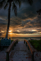 Naples beach (dannygreyton) Tags: usa naples beach florida clouds sky palmtree sunset sand light ocean sea