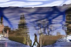 Over The Puddle (Alex L'aventurier,) Tags: montreal montréal quebec québec canada street rue puddle puddlegram reflet flaque reflection water eau blue bleu sky ciel walking marcher shadow ombre man personne person