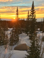 First Backpacking Trip of 2019 (kevin-palmer) Tags: highpark bighornmountains bighornnationalforest wyoming january winter snow snowy evening sunset dusk color colorful yellow gold golden orange clouds campsite tent trees sun iphone6 bigagnes hdr cold