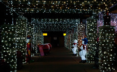 Tunnel of Lights! (J.R. Rondeau) Tags: rondeau windsor ontario christmas xmas christmaslights christmasdecorations bright lights brightlights colors colours canoneos tamron2875 photoshopelements10