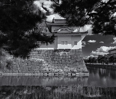 The South-east Watchtower (Tim Ravenscroft) Tags: castle watchtower nijo moat kyoto japan hasselblad hasselbladx1d monochrome blackandwhite blackwhite